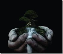 handsholdingtrees