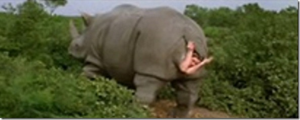 CareyArmsEmergingFromRhino