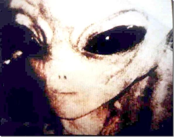 gray_alien