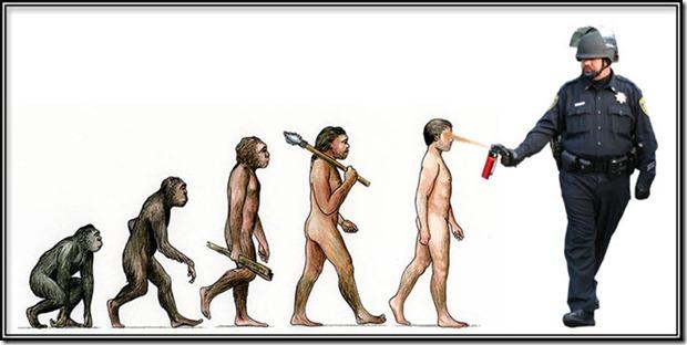 evolved (3)