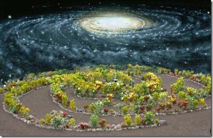 Galaxy_Garden
