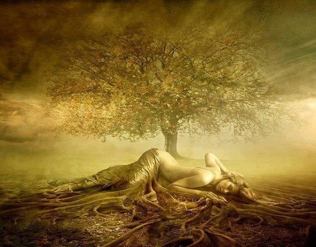 primal-spirituality-xxx