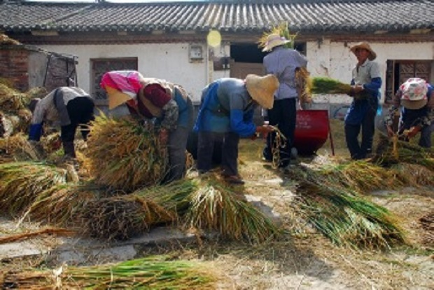rural-reform-and-revolt-in-china-2